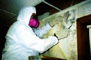 IICRC Applied Mould Remediation Technician